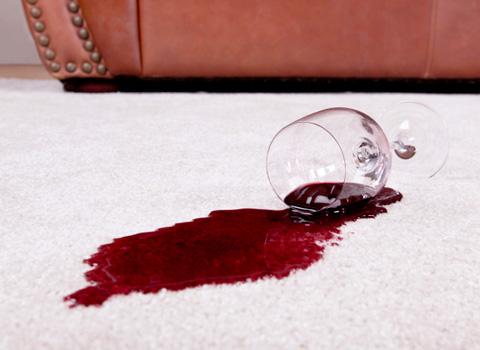 carpet spot removal rochester