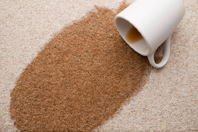 carpet stain protectant rochester
