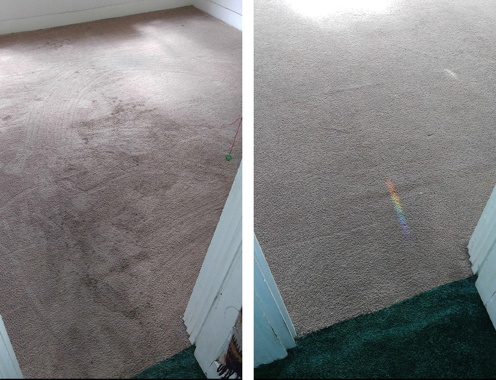 carpet cleaning pittsford, NY