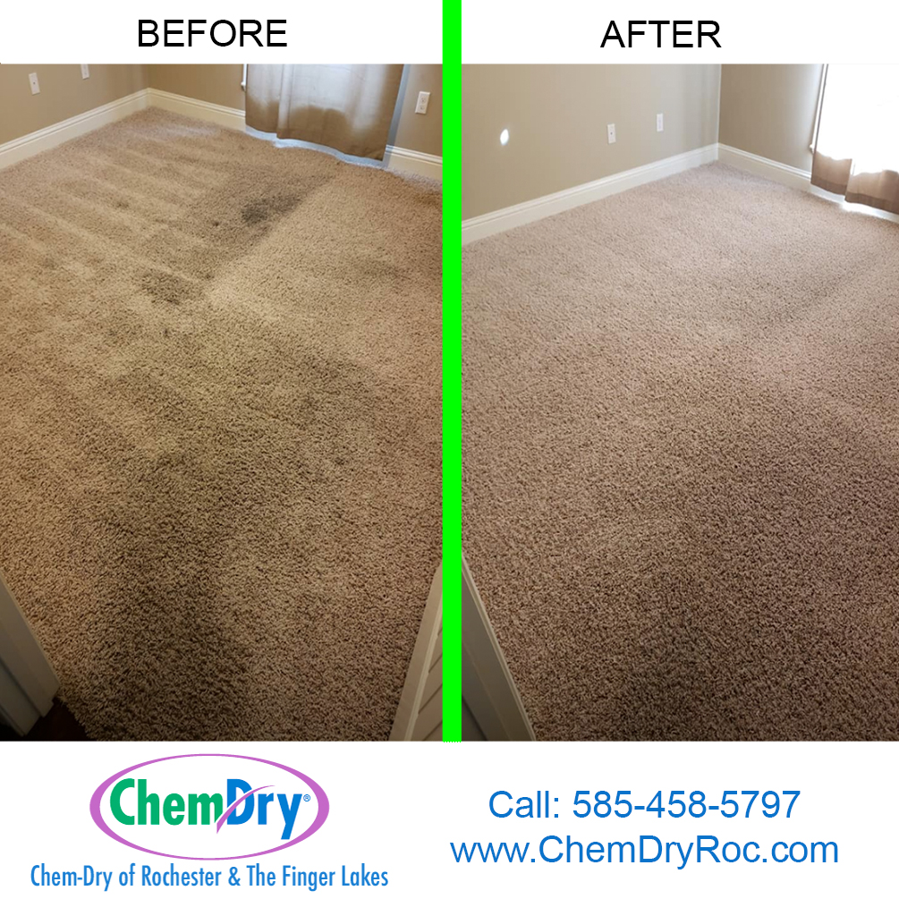carpet cleaning Webster, NY